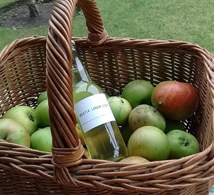 apples and cider in basket